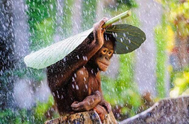 Потрясающие снимки, доказывающие, что мир красив без фотошопа