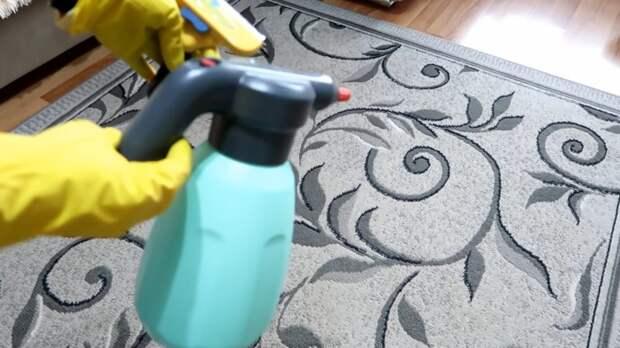 Как легко избавить ковры от шерсти питомца в доме