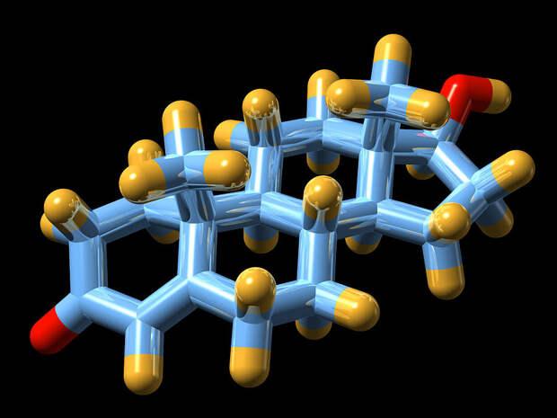 Минеральные удобрения Лучше не оставлять организм без внешней поддержки. Основную роль в синтезе тестостерона играет цинк: разработайте диету, которая будет в избытке содержать этот минерал. Устрицы, карп, сельдь, арахис, грецкий орех, миндаль и тыквенные семечки вам в помощь. Кроме того, не стоит забывать и о других важных минералах — кальций, селен и магний тоже должны присутствовать в вашем ежедневном рационе.