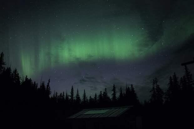 Семья покинула цивилизацию ради уединенной жизни на Аляске