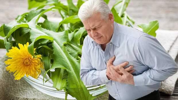 Обычный сорняк может стать помощником в борьбе с болезнями сердца