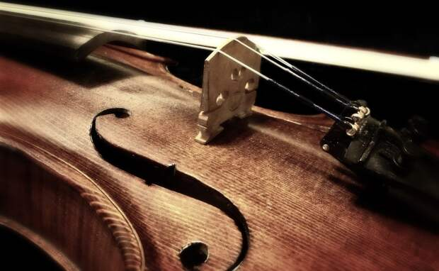 В России маткапитал предложили тратить на покупку музыкальных инструментов