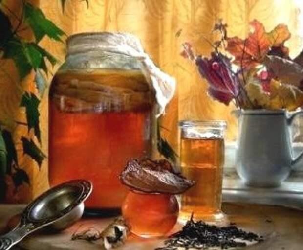 Как запросто вырастить чайный гриб с нуля + уход за ним еда, напитки, своими руками, сделай сам