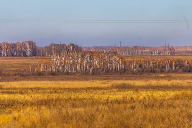Жаркие дни в Новосибирске сменят дожди – прогноз погоды 19-23 октября
