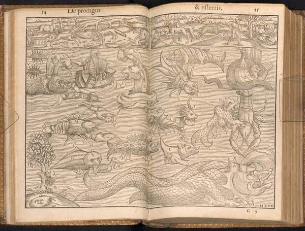 10 самых странных книг в истории: от ацтеков до наших дней