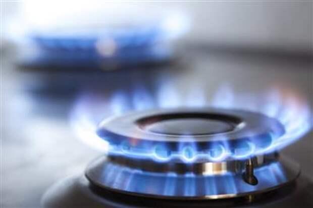 """МИД РФ рассчитывает, что в ЕС скоро начнут получать газ по """"Северному потоку-2"""""""