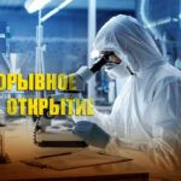 В РФ найден революционный природный антибиотик
