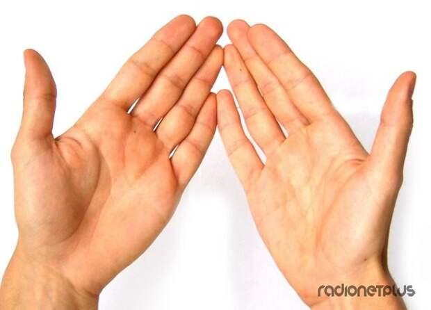 Признаки болезни по ладони: Давайте погадаем по руке...