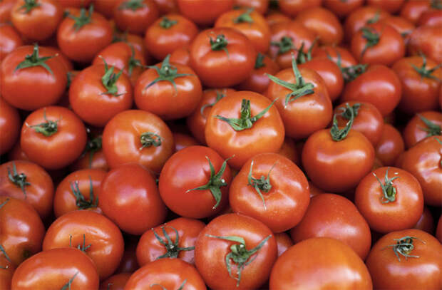 Расчищаем место в холодильнике: храним овощи в обычной комнате