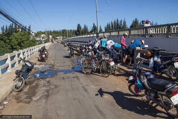 Как вьетнамцы ловят рыбу пластиковыми бутылками