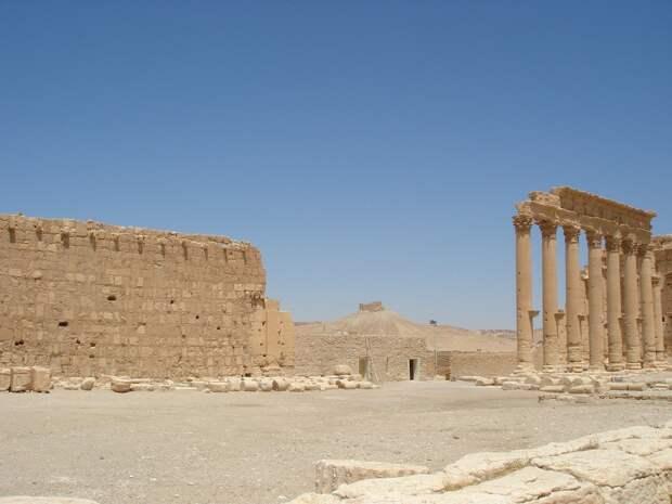 Российские специалисты приступили к восстановлению храмов в Сирии