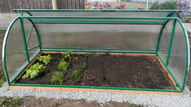 Для выращивания в парнике Хлебница больше всего подходит зелень, лук, чеснок и другие культуры небольшой высоты