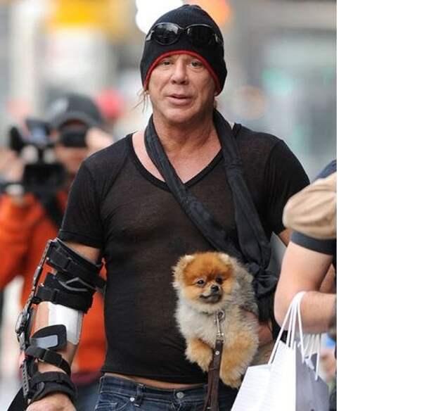 Микки Рурк. Мои 6 собак спасли мне жизнь