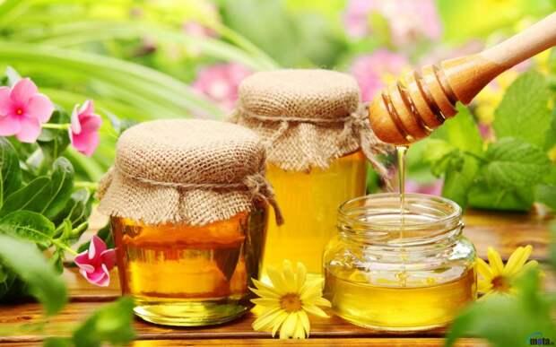 Лечение простатита медом и травами