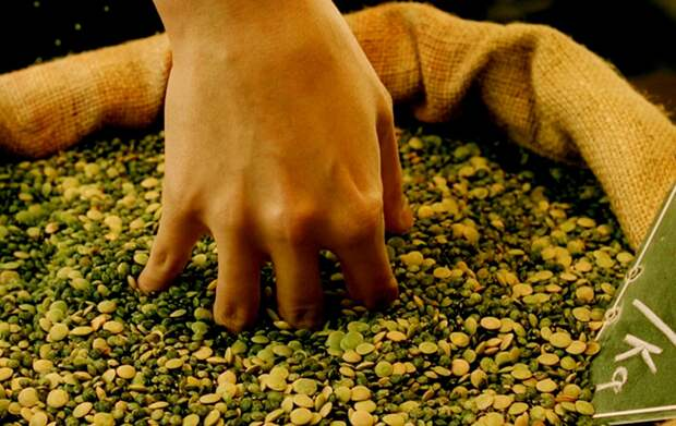 Смотреть и щупать: 15 правильных картинок для кинестетиков