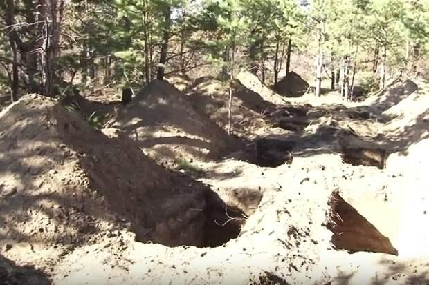 Могилы для еще живых ветеранов ВОВ выкопали на кладбище в Чите