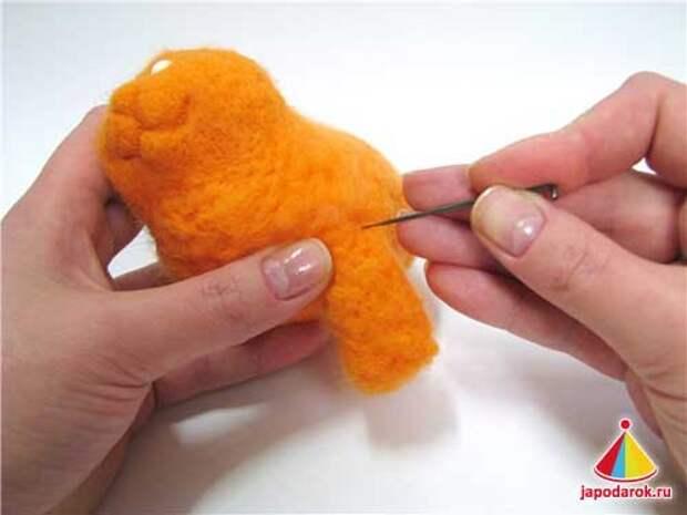 mandarin cat 14