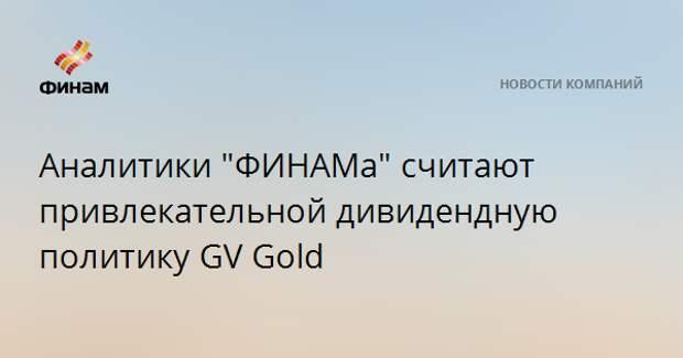 """Аналитики """"ФИНАМа"""" считают привлекательной дивидендную политику GV Gold"""