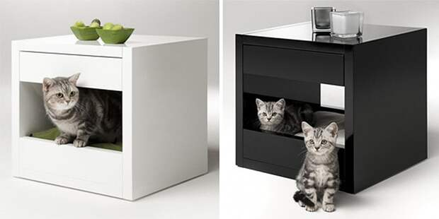cathouse15 Дизайн для котов