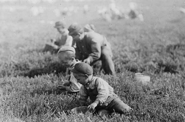 Детям 3, 6 и 9 лет. 1910 год женщины, интересное, история