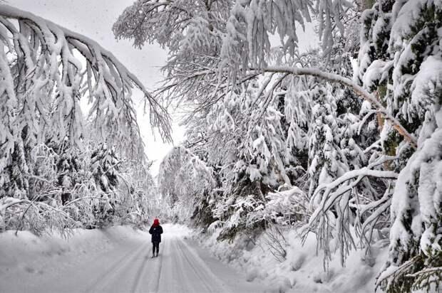 Синоптики прогнозируют аномально снежную зиму в России