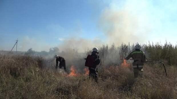 В н.п. Николаевка горел сухостой вблизи жилых домов