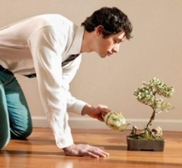 Заговор для растений