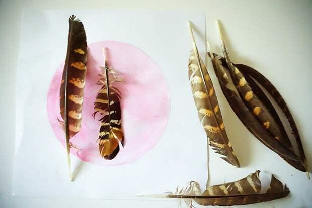 Настенный декор из перьев фазана