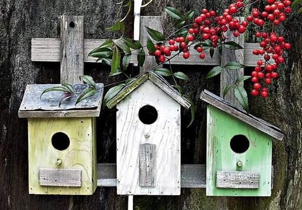 Домики для птиц могут быть разной формы