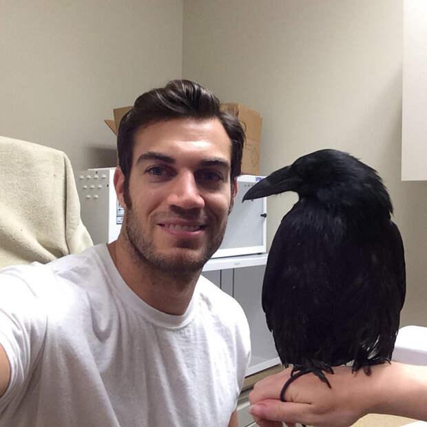 34.  ветеринар, красавец, мужчина