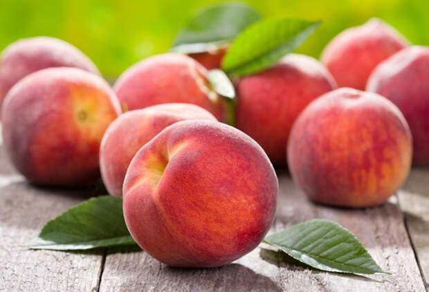 Алыча, абрикосы, нектарин, персики в зоне рискованного земледелия