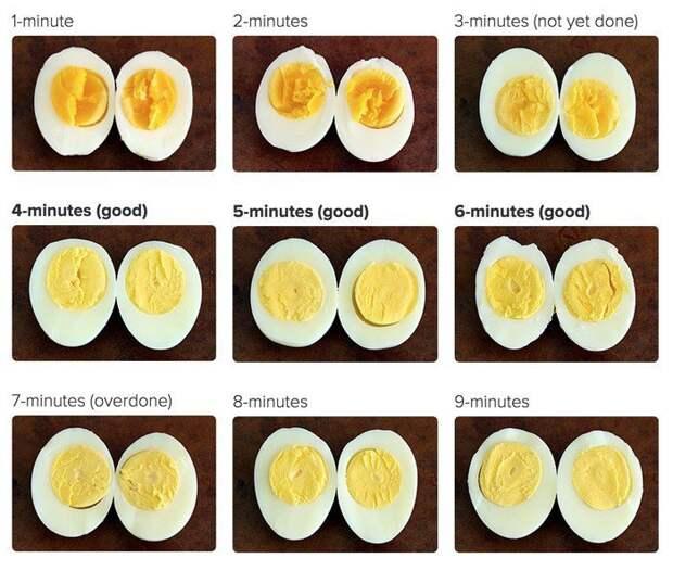 Сколько враить яйца Фабрика идей, Шпаргалки, помощь, про все на свете