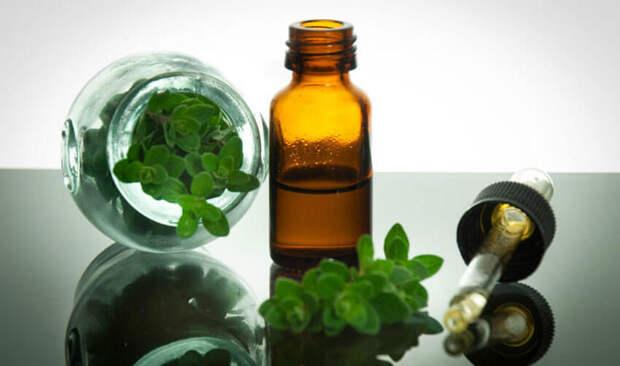 Удивительные лечебные свойства масла орегано