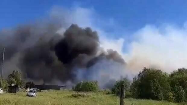 Крупный пожар возник в леспромхозе под Свердловском