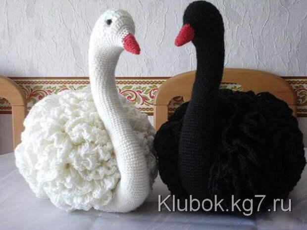 Очаровательные лебеди