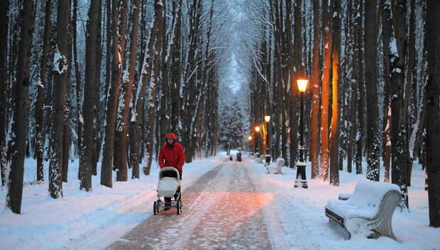 Средняя температура первой декады февраля в регионе превысит норму на 6–7 градусов