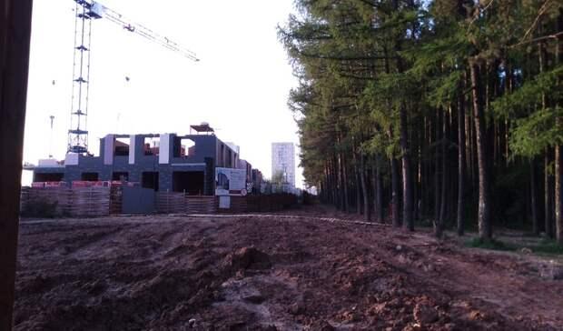 В Ижевске исчез целый лес
