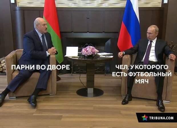 7 лучших мемов о переговорах Путина и Лукашенко