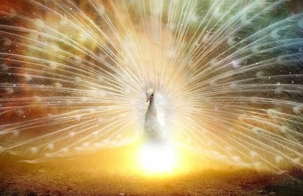 В апреле 2021 года для 4 зодиакальных представителей начнется время счастья и процветания