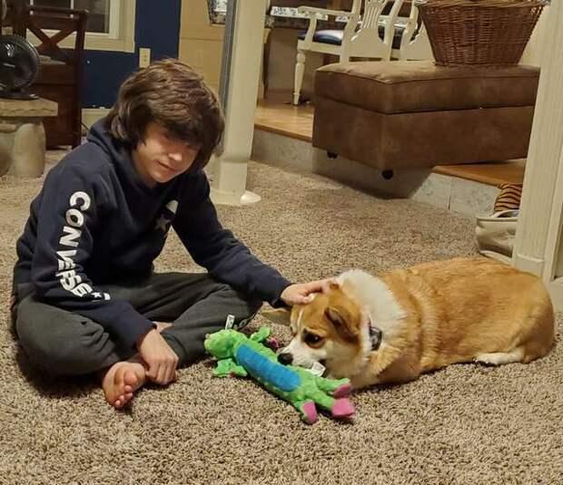 парень и собака