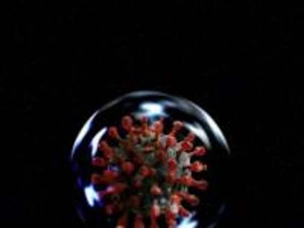Какие пророки предсказывали появление коронавируса