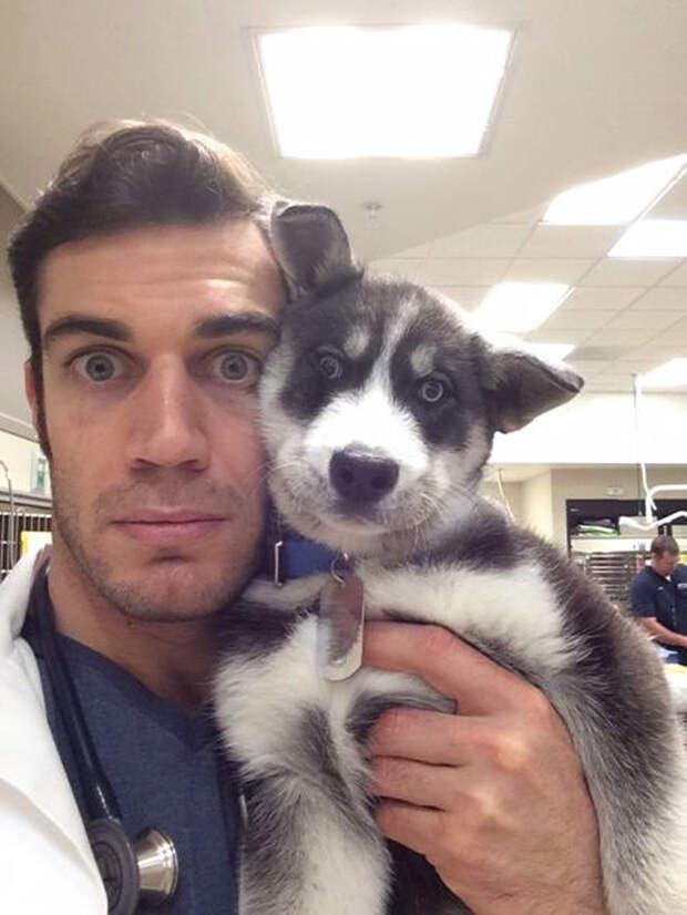 5.  ветеринар, красавец, мужчина