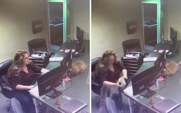 Кот уронил на девушку стакан с кофе и вызвал у нее неожиданную реакцию