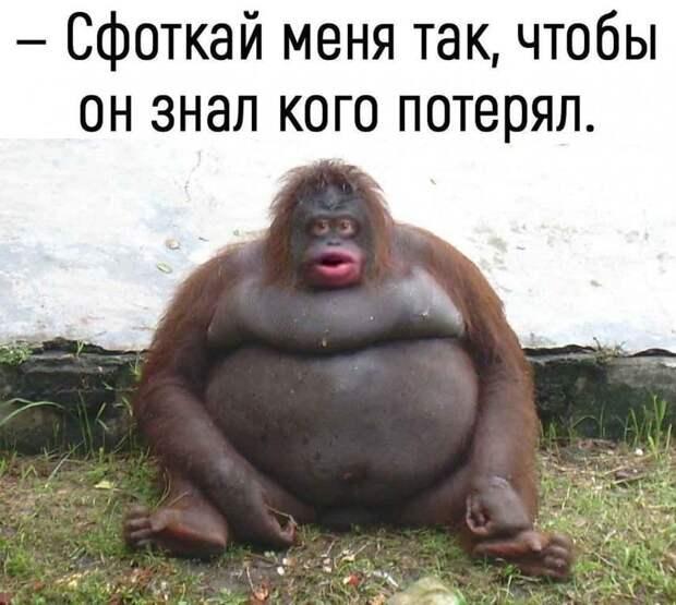 Новый русский приходит в туристическое агенство: - Я бы хотел побывать в Санта Барбаре...