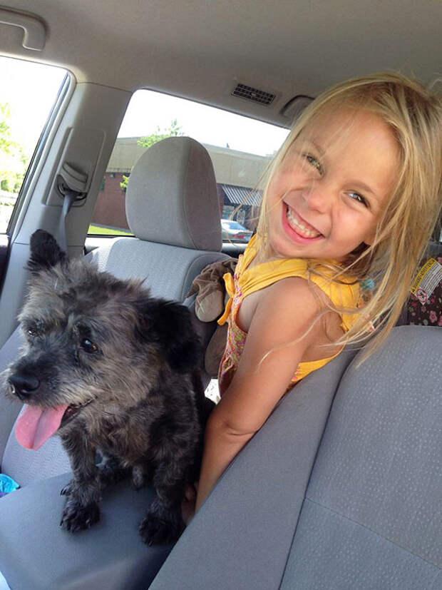Как вы видите, пес обожает сидеть в машине по центру. Наверное, так чувствует себя царем женщина, пес, приют