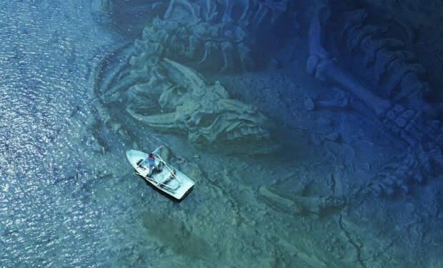 5 находок со дна моря: случайные открытия дайверов