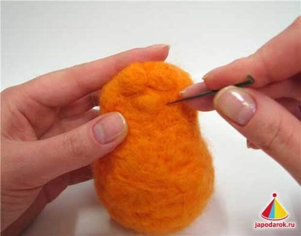 mandarin cat 09