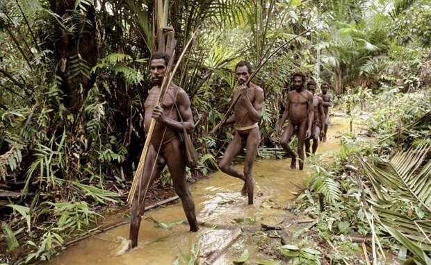 Дикие племена: Папуасы Новой Гвинеи