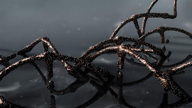 Животные могут быть виновниками появления британских штаммов коронавируса