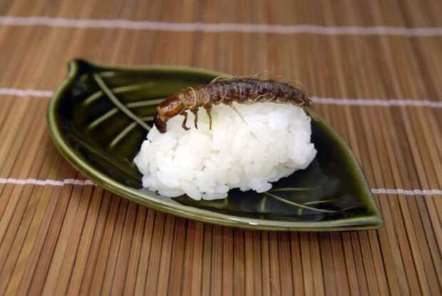 экзотическое суши 6